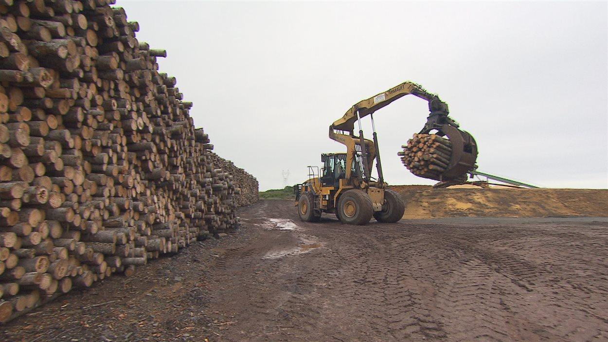Une cour d'usine de bois d'oeuvre