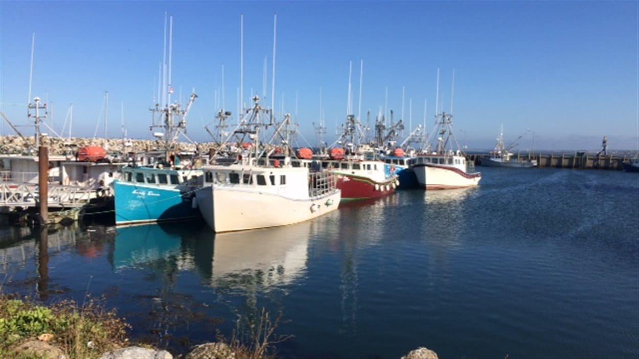 Bateaux de pêche au port de Meteghan.