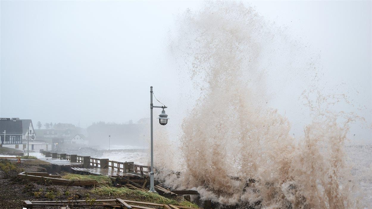 Les vagues impressionnent par leur hauteur.