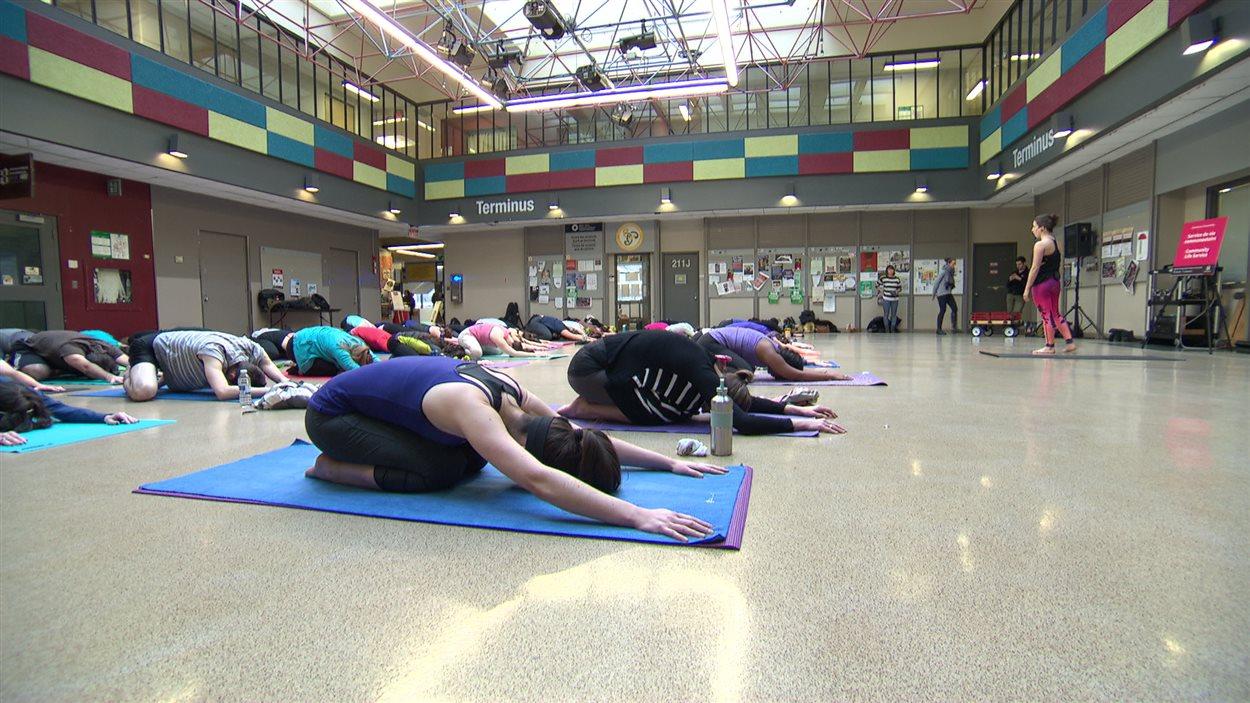Un cours de yoga dispensé en plein coeur du pavillon Jock-Turcot.