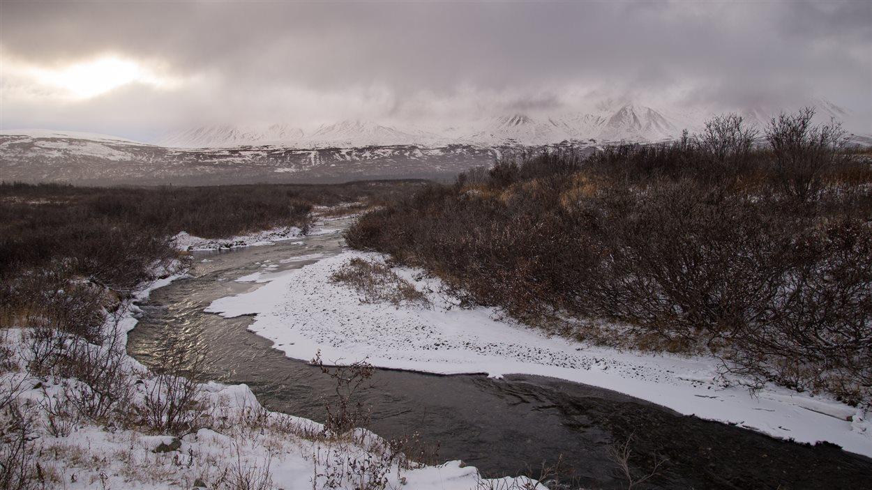 Paysage du Yukon
