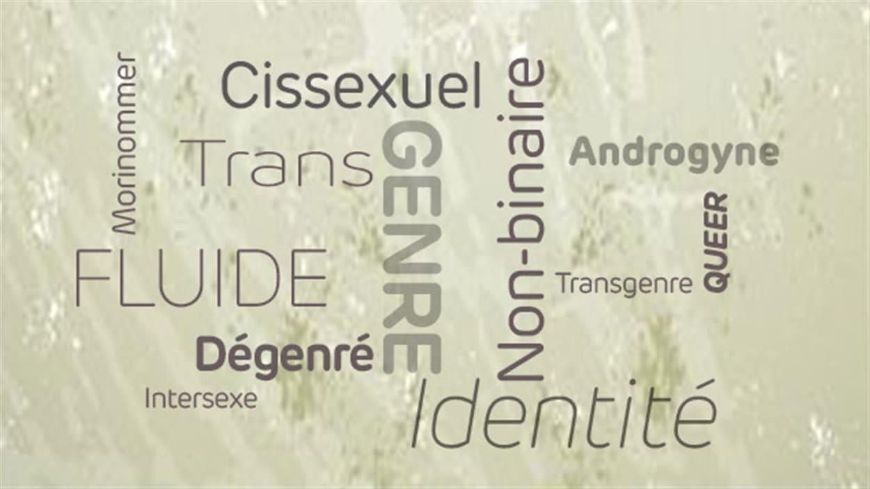 Lexique des identités sexuelles