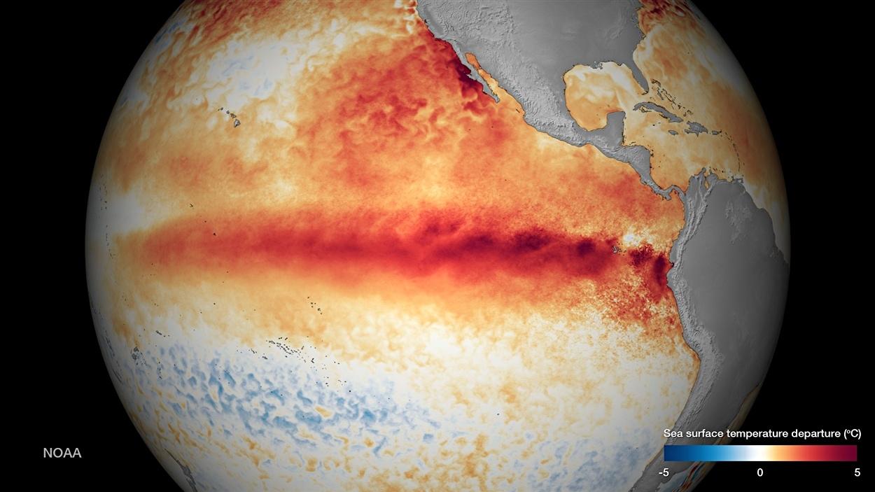 La bande rouge montre le réchauffement des eaux de l'océan Pacifique en octobre 2015 dû au phénomène El Nino.