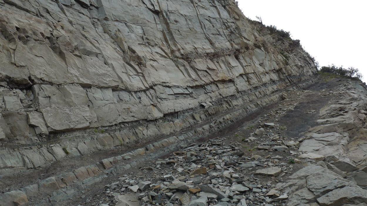 Falaise à l'Anse-à-Brillant où plusieurs fossiles ont été retrouvés