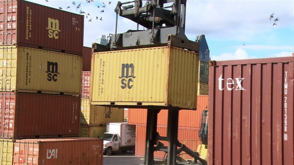 L'exportation de légumineuses