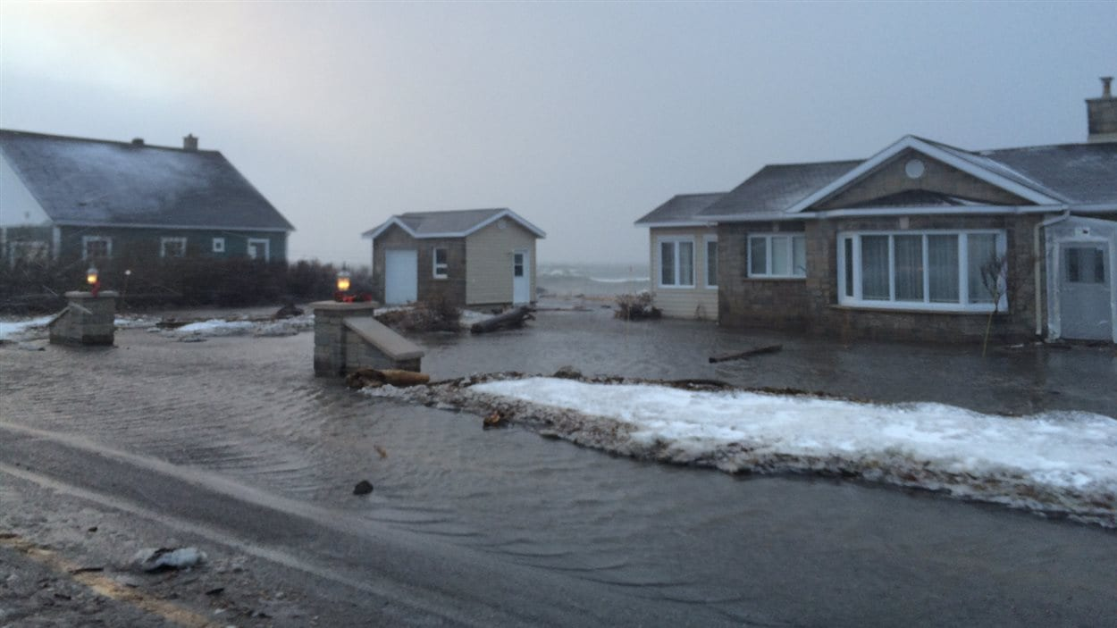 Un terrain inondé à Matane-sur-Mer.