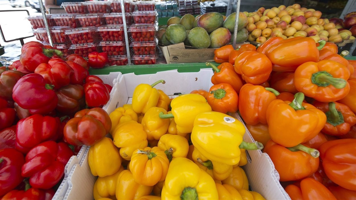 Il est difficile d'acheter de la nourriture au centre -ville de Saskatoon