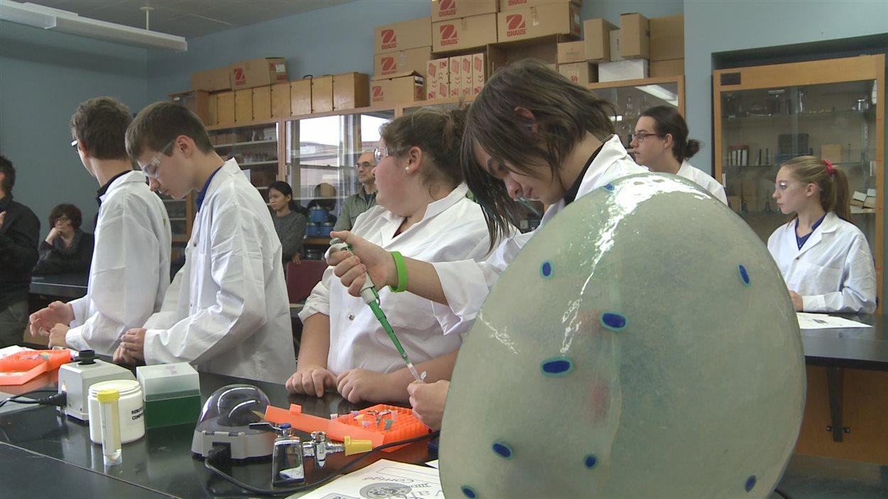 Les élèves sont capables d'identifier des espèces de poisson grâce à leur code-barres génétique.
