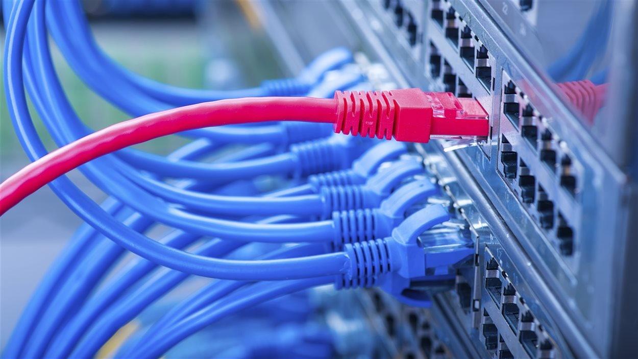 Les documents envoyés via la plateforme Source anonyme seront stockés dans un serveur sécurisé et consultables à partir d'un ordinateur qui n'a jamais été connecté à Internet.