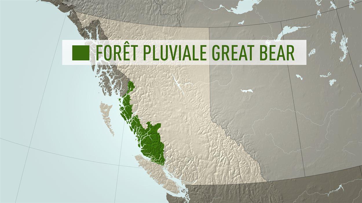 Carte de la forêt pluviale du Grand Ours en Colombie-Britannique.