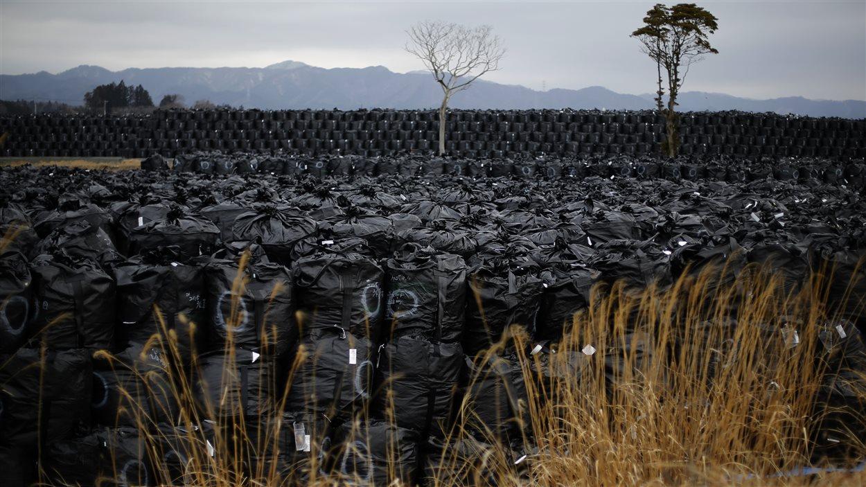 Sacs contenant de la terre et des débris radioactifs jetés dans un dépotoir «temporaire» à Fukushima, le 22 février 2015.
