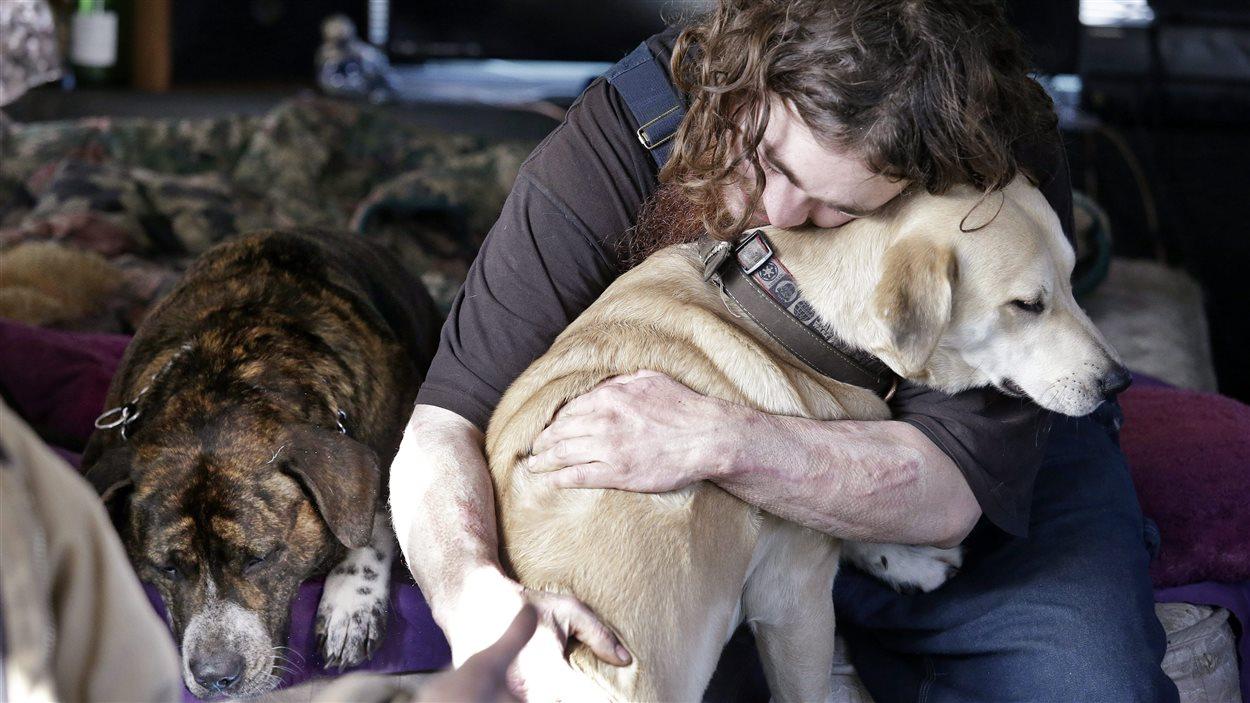 Un homme sans-abri et ses chiens
