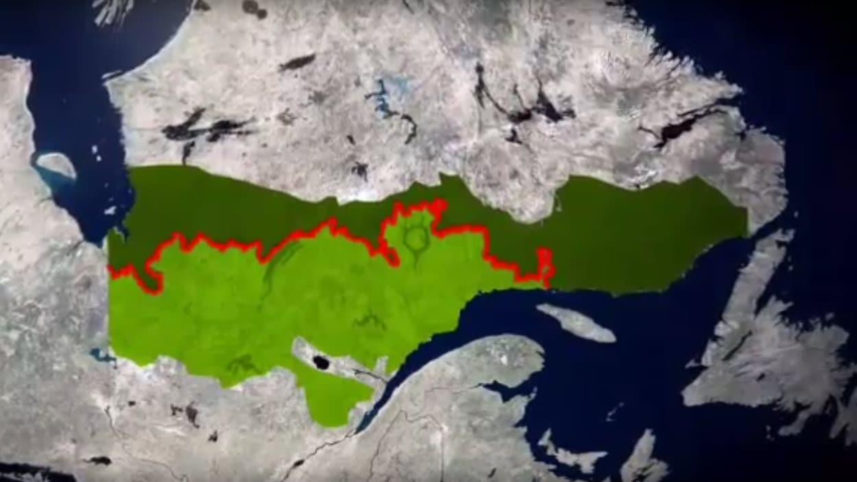 Au Québec, l'exploitation de la forêt boréale est interdite au nord de la ligne appelée la «limite nordique des forêts attribuables». La forêt y est de fait protégée par la loi.