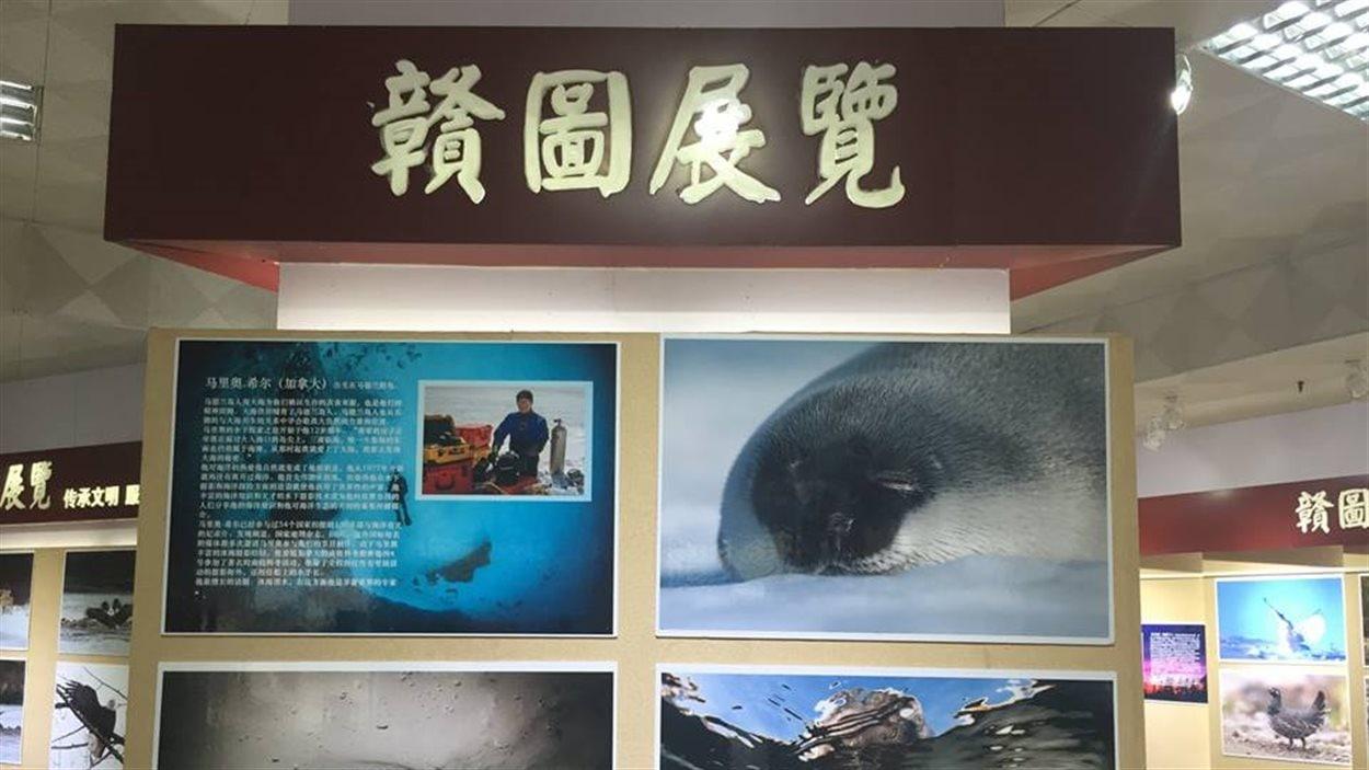 150 000 personnes ont vu l'exposition en Chine. photos de Mario Cyr avec écriture en Mandarin