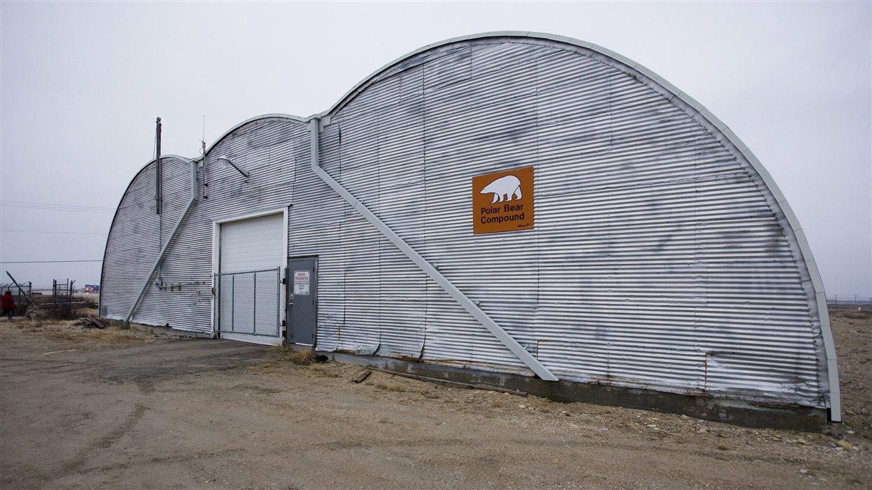 La «prison des ours polaires» à Churchill, au Manitoba.