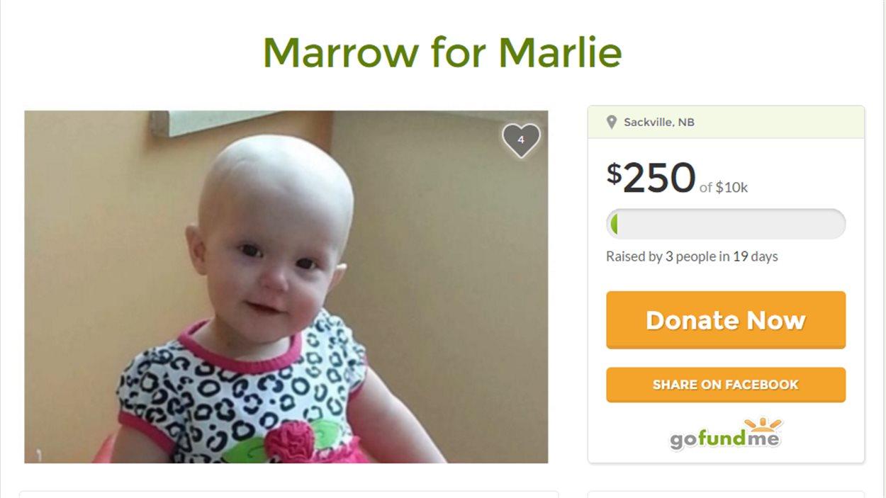 La fausse page de sociofinancement pour Marlie a été retirée par le site Gofundme.