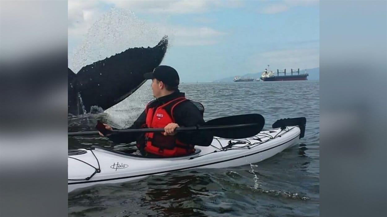 Une baleine près d'un kayakiste au large du centre-ville de Vancouver.