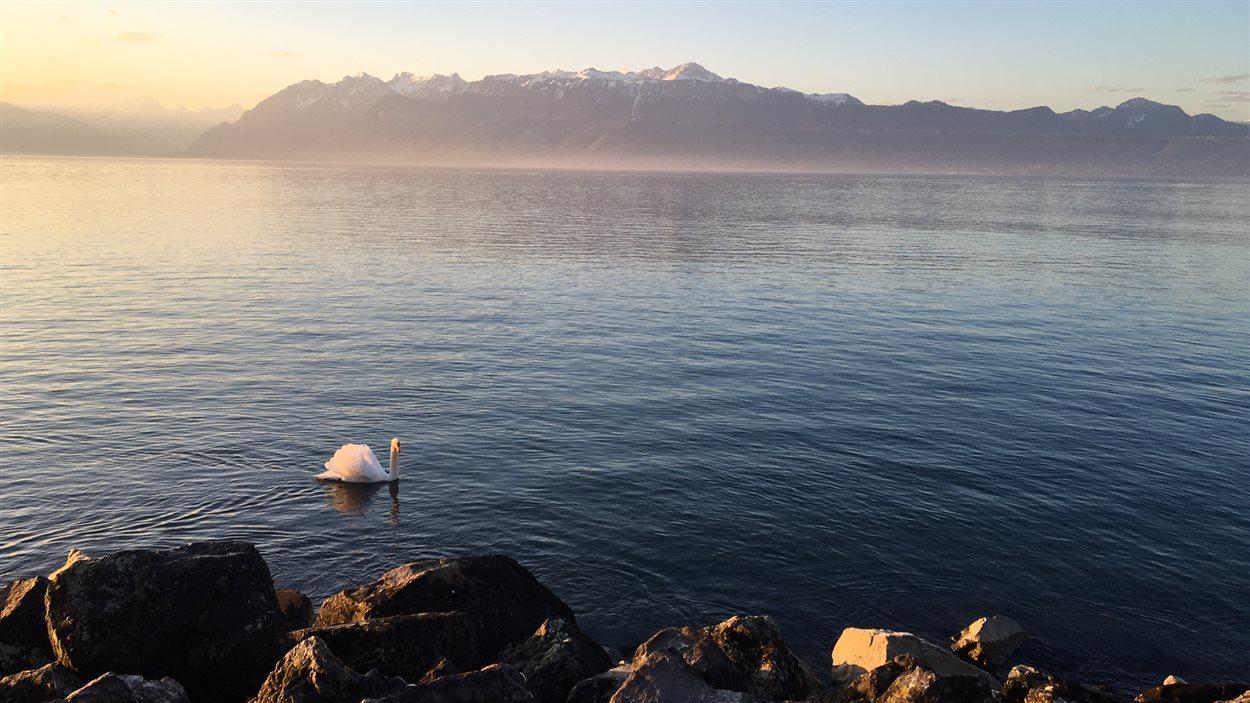 Le lac Léman, à Lausanne, en Suisse.