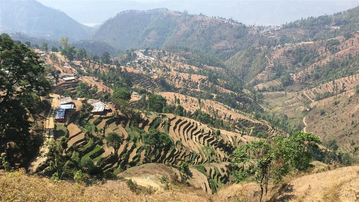 3557 personnes sont mortes dans la région de Sindhupalchowk, ce qui représente le tiers des victimes dans le pays. La plupart des habitations dans cette région sont rudimentaires. Elles sont fabriquées de boue et de pierres.