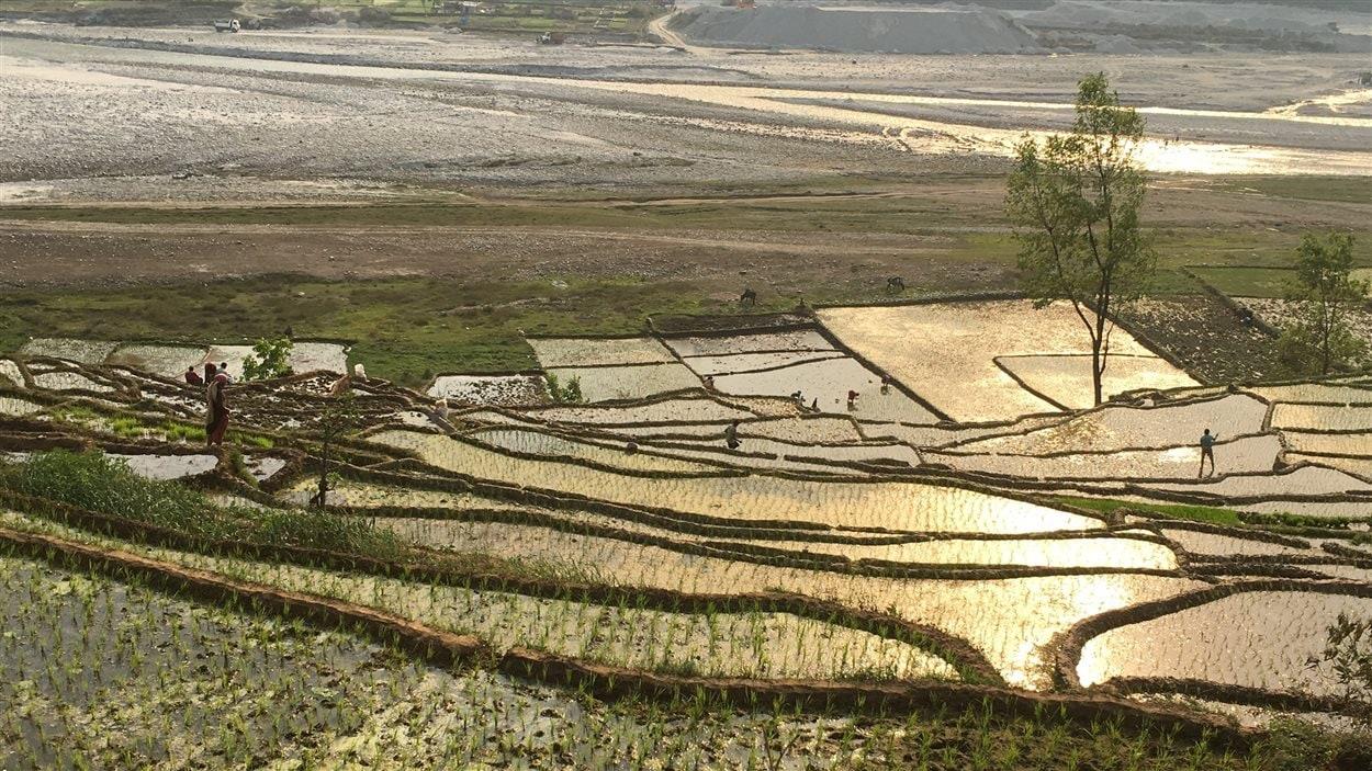 La région de Sindhupalchowk est l'une des plus pauvres du Népal. L'agriculture est au coeur de son économie. Près de 65 000 maisons ont été endommagées ou détruites dans ce district à la suite du tremblement de terre, soit 96.8% de toutes les résidences.