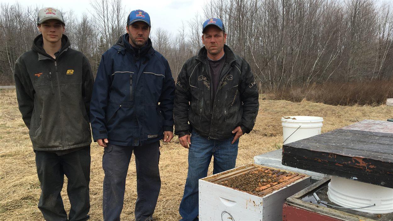 La famille Labonté a été victime d'un important vol de 184 ruches