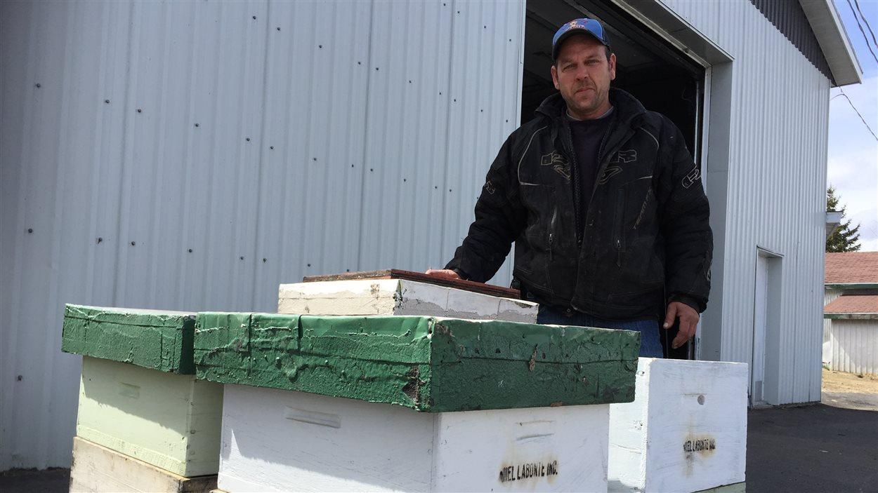 Francis Labonté, apiculteur