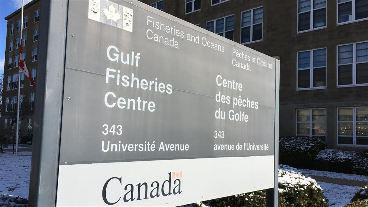 Centre des pêches du golfe
