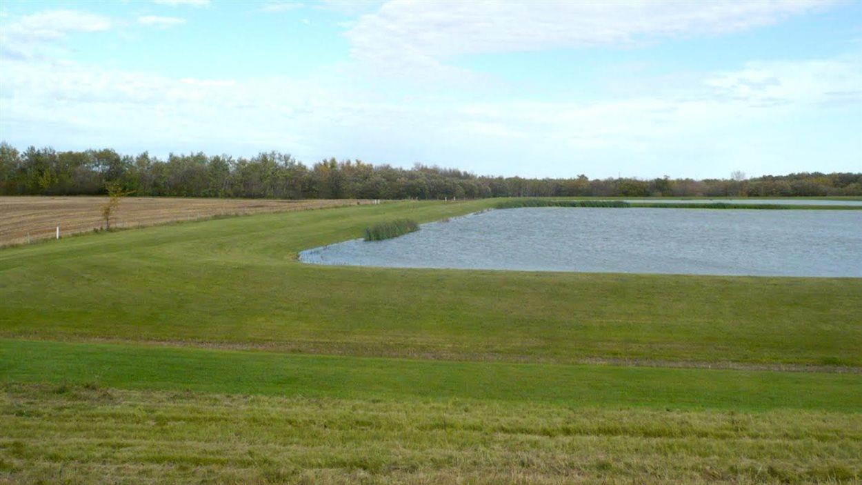 Le village de Saint-Pierre-Jolys propose à ses résidents un projet vert pour l'agrandissement du bassin d'épuration.