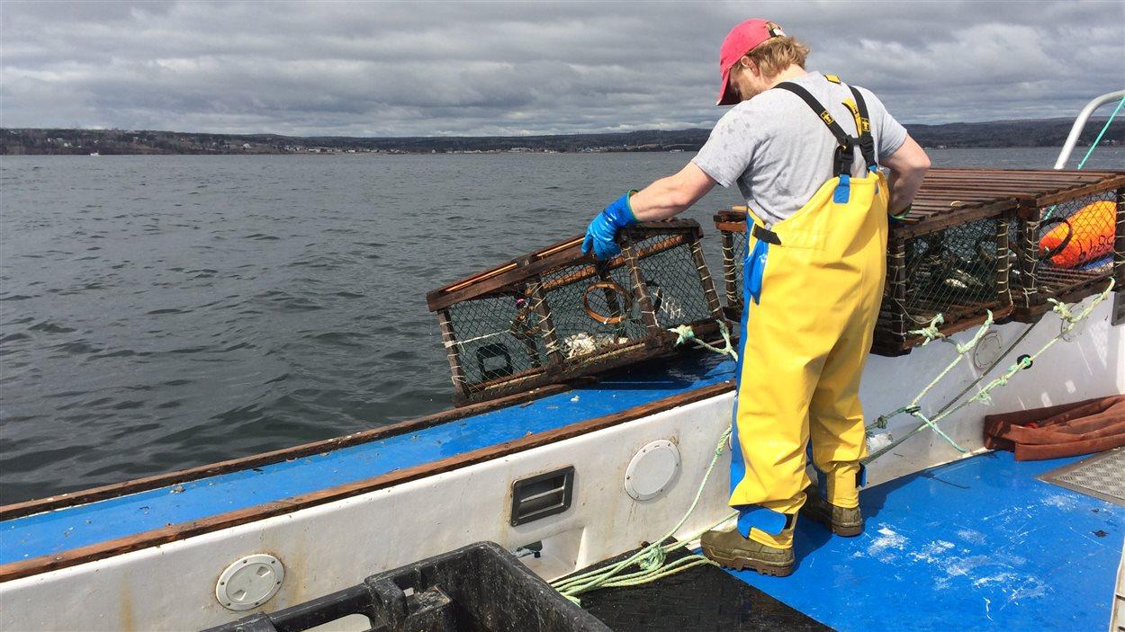 Bateau de pêche au homard au large de Port-Daniel-Gascons