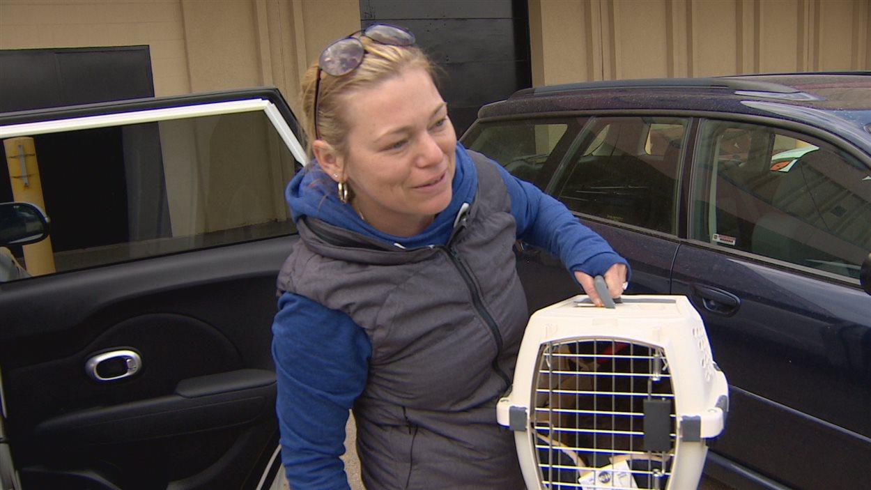 Stacey Park a retrouvé ses deux chats et son perroquet.