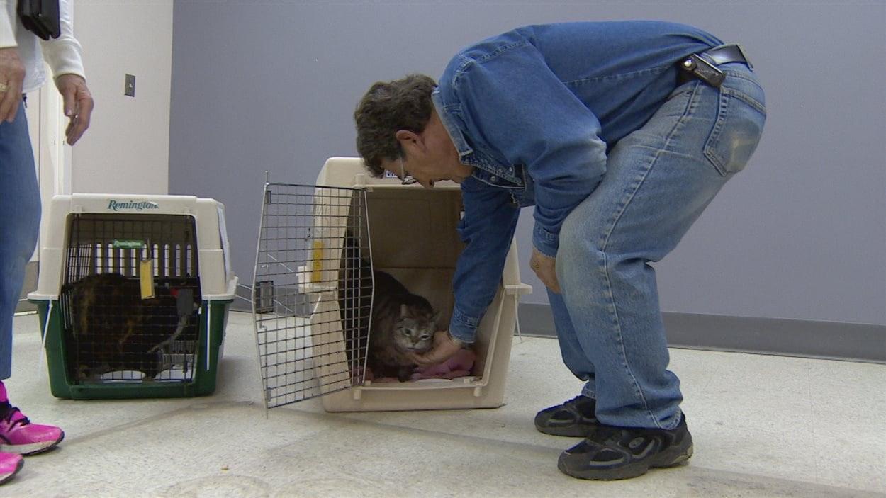 Mike Manning donne un câlin à son chat Simon.