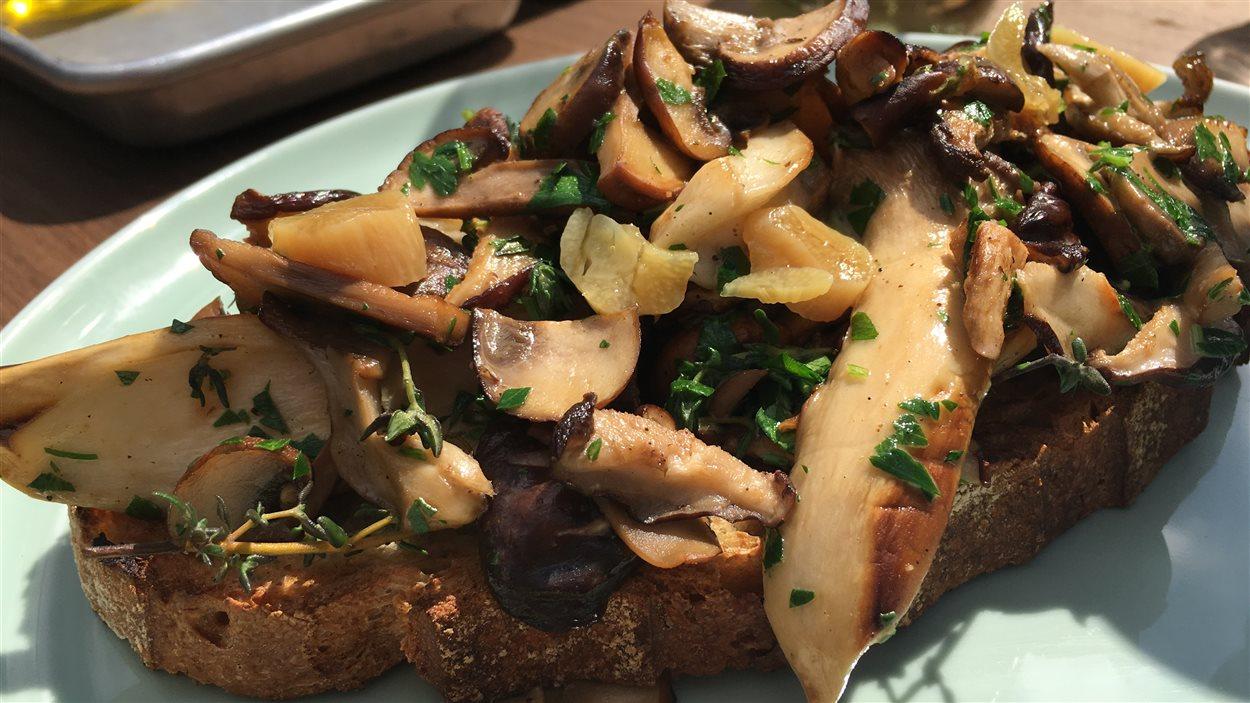 Champignons sur pain grillé