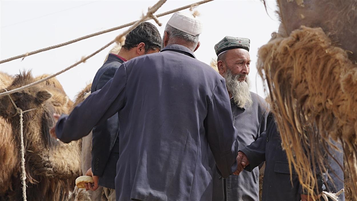 La nouvelle route de la soie laisse présager un avenir prospère pour les commerçants.