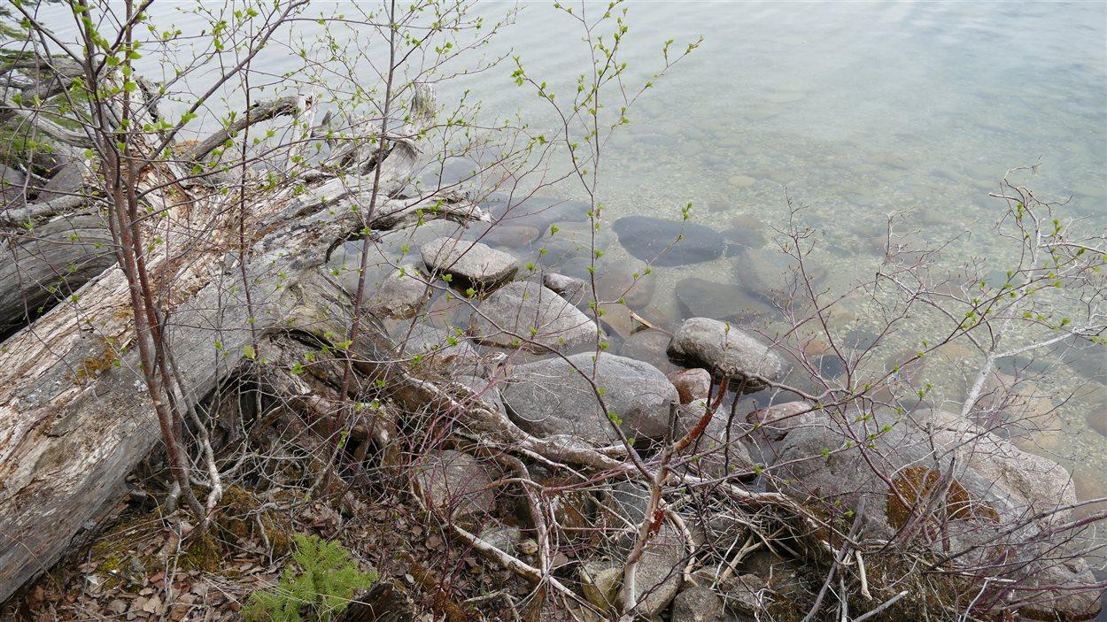 L'eau du lac Clear au Parc national du Mont-Riding