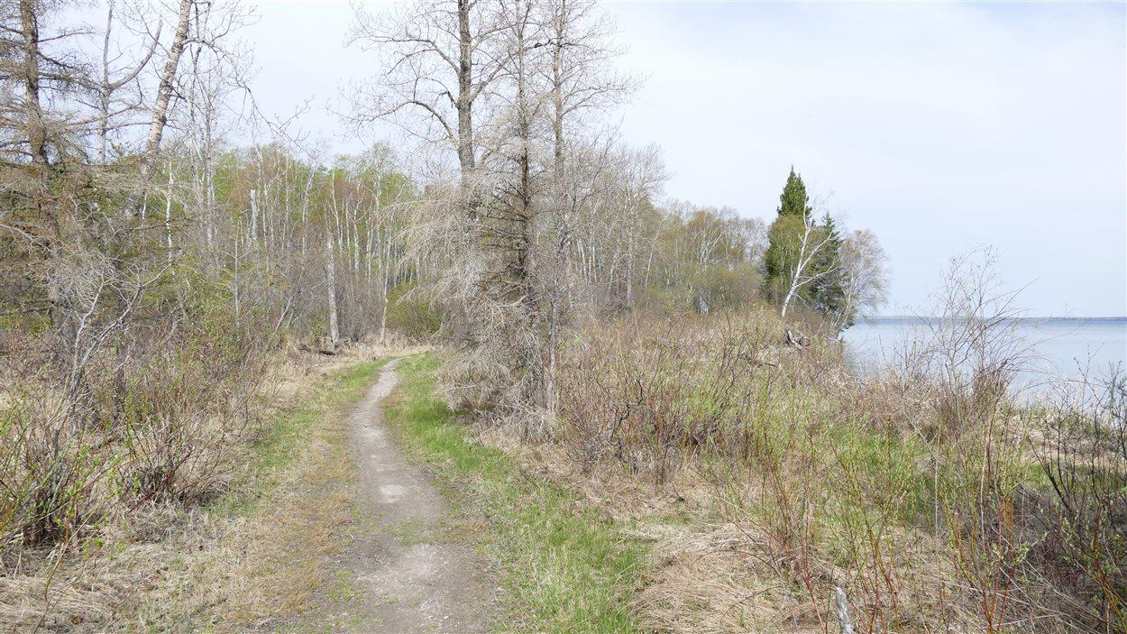 Le sentier sud du lac Clear.
