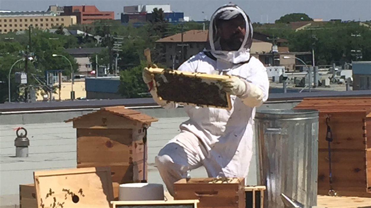 Troy Donavan, l'apiculteur de l'Université, montre la technique d'extraction du miel des ruches.