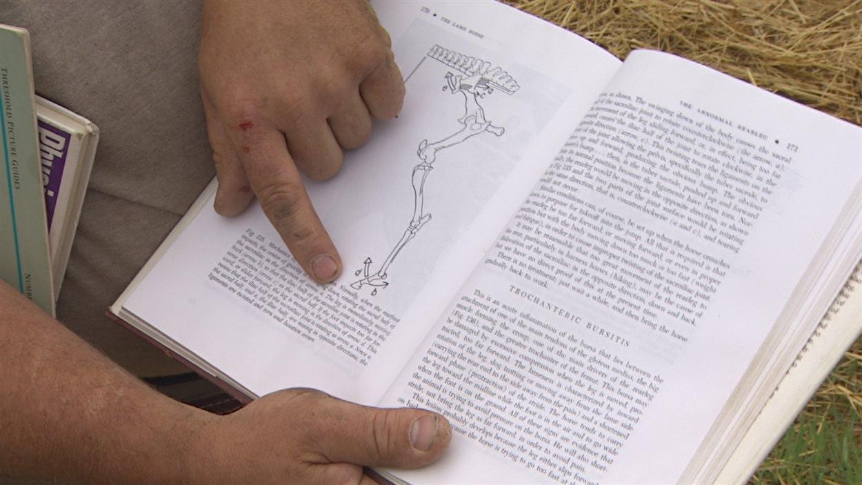 Joel Bernier, maréchal équestre, tire son savoir de certains livres traditionnels.