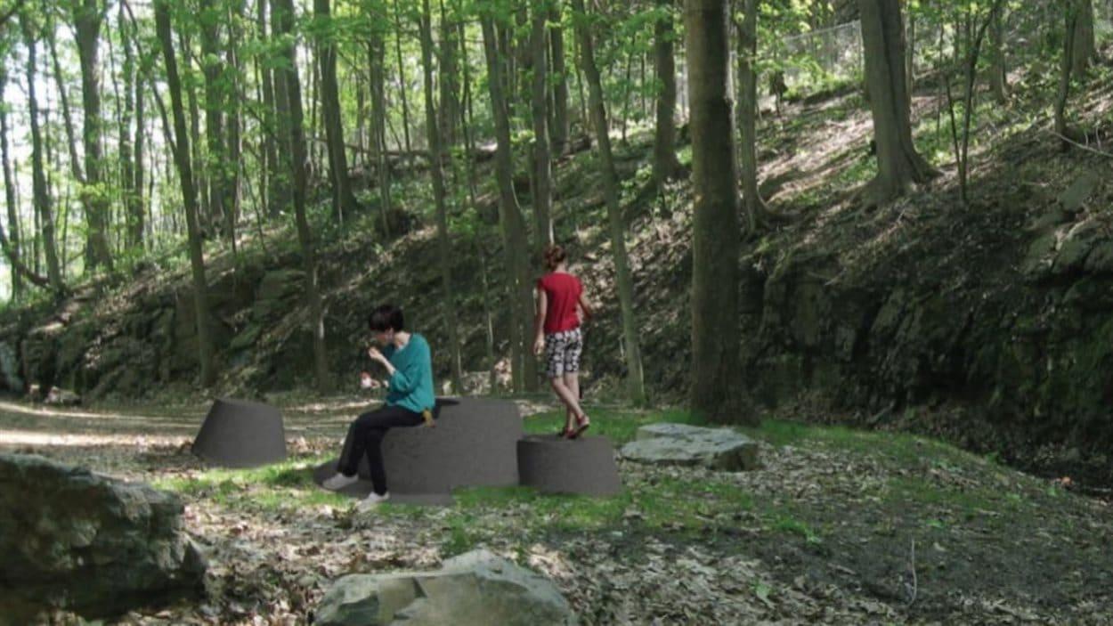 Le projet de souches de granit sur le mont Royal