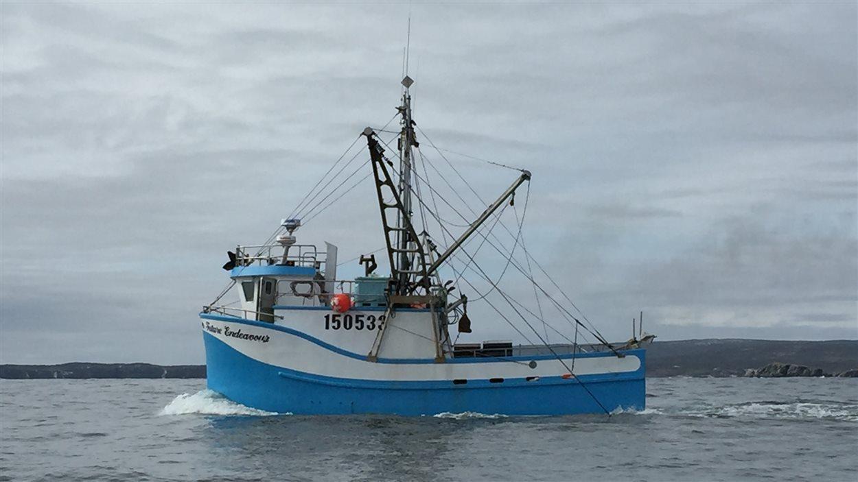 Un bâteau de pêcheur à Terre-Neuve