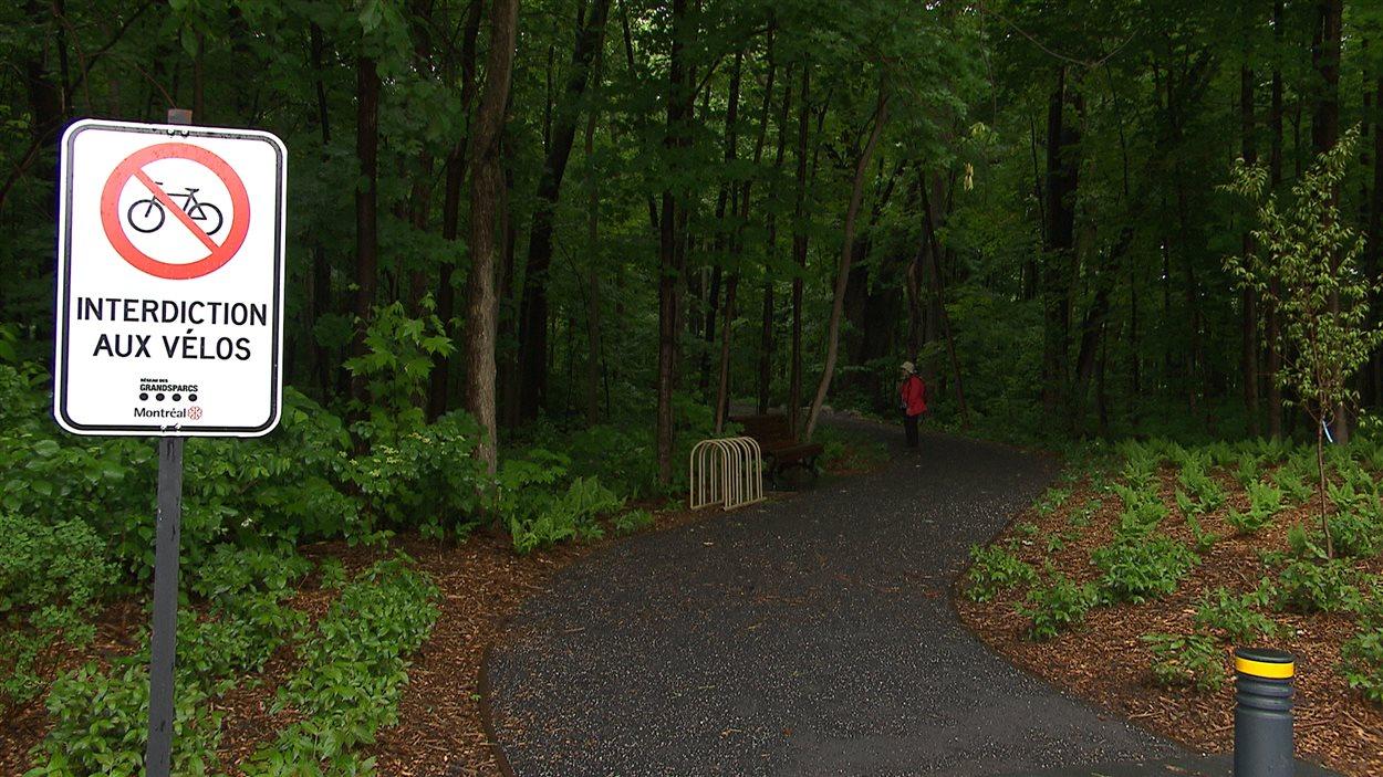 Le parc-nature du Bois-de-Saraguay n'est pas ouvert aux cyclistes, pour protéger la biodiversité du boisé.