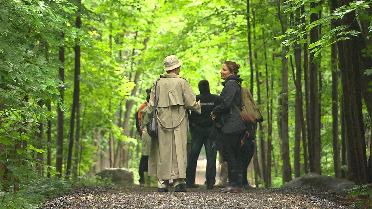 Le parc-nature Bois-de-Saraguay à Ahuntsic-Cartierville.