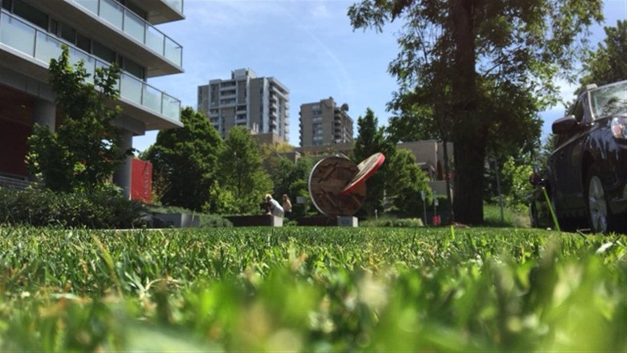 Une aire de pelouse dans le quartier West End de Vancouver