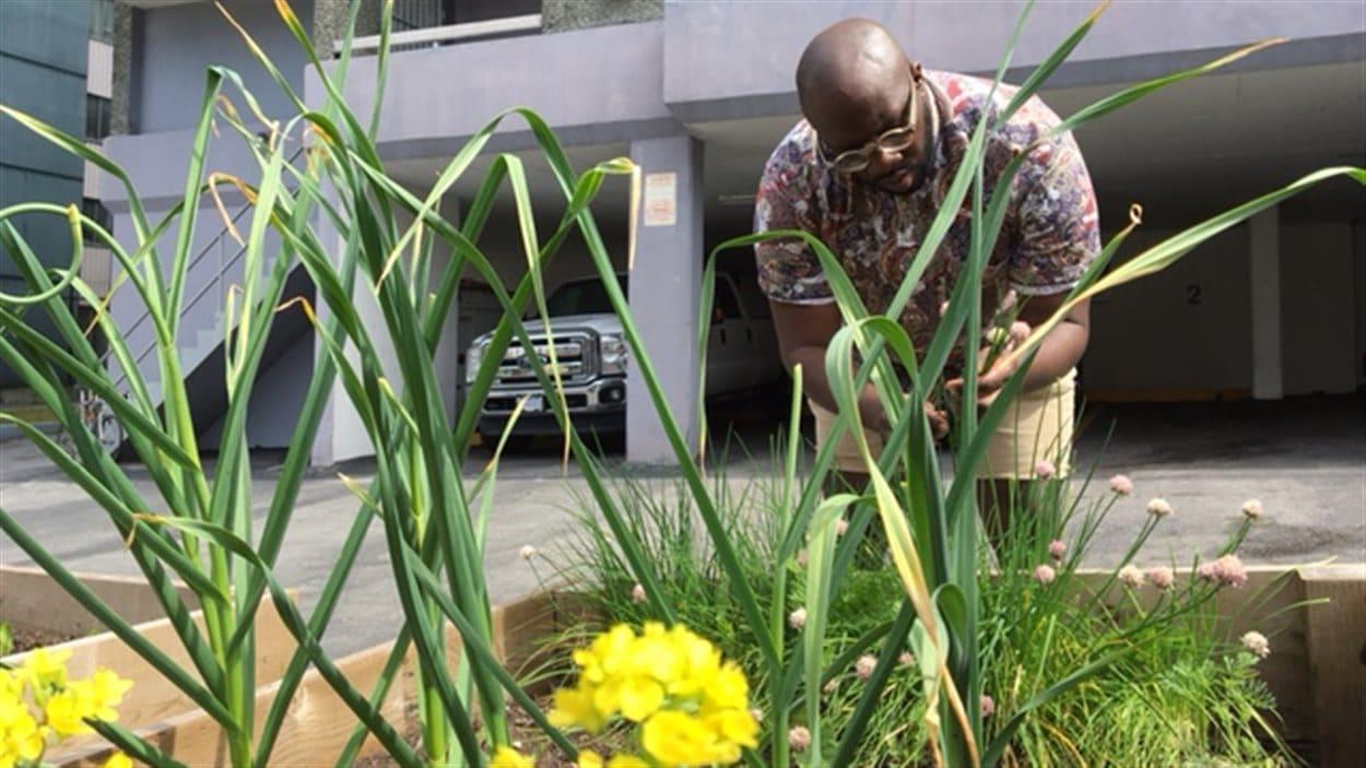 Paul Taylor, le directeur de la Gordon Neighbourhood House, à un des jardins communautaires du quartier West End