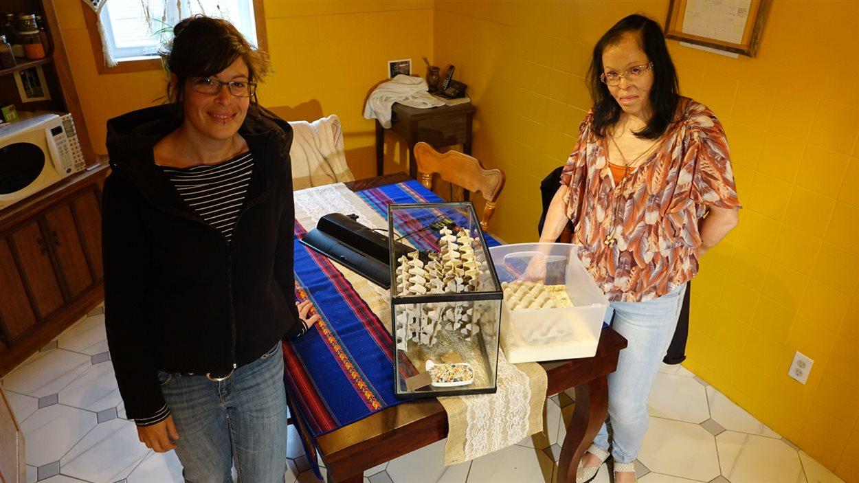 Judith Beaudoin et Sonia Plante se lancent dans l'élevage d'insectes. On les voit ici avec un aquarium rempli de grillons et un bac rempli de ténébrions, un tout petit échantillon de l'élevage que Mme Plante aura dans son entreprise, Virebebittes