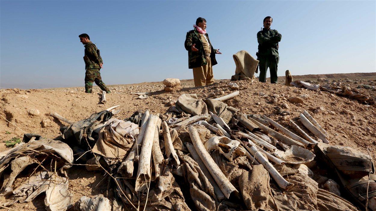Des charniers ont été découverts par les forces kurdes dans les environs de Sinjar à l'automne 2015.