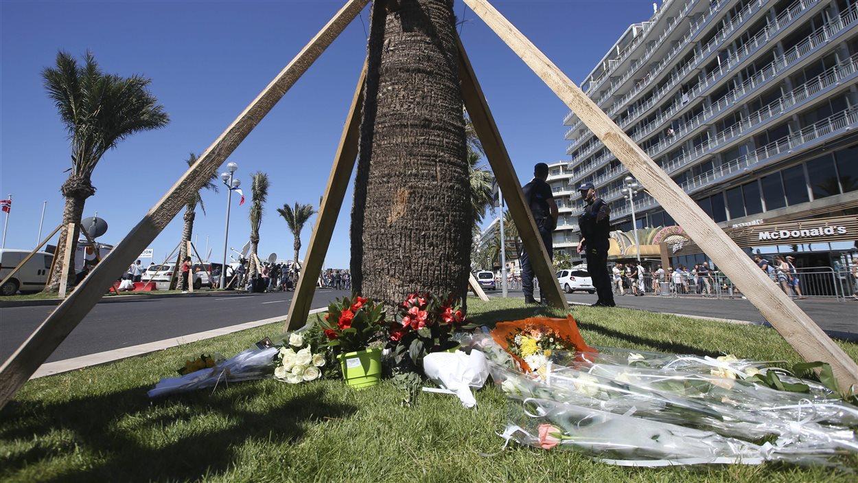 Des fleurs à Nice au bas d'un palmier