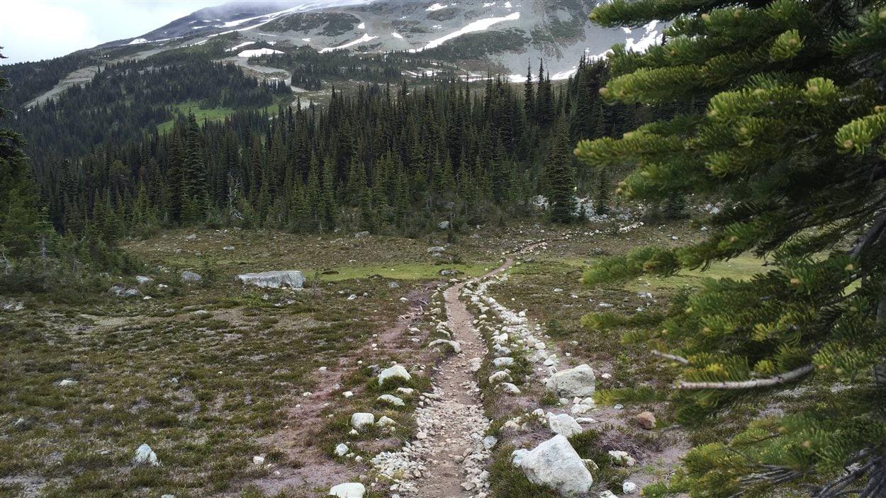 Le sentier serpente le long de Decker Loop