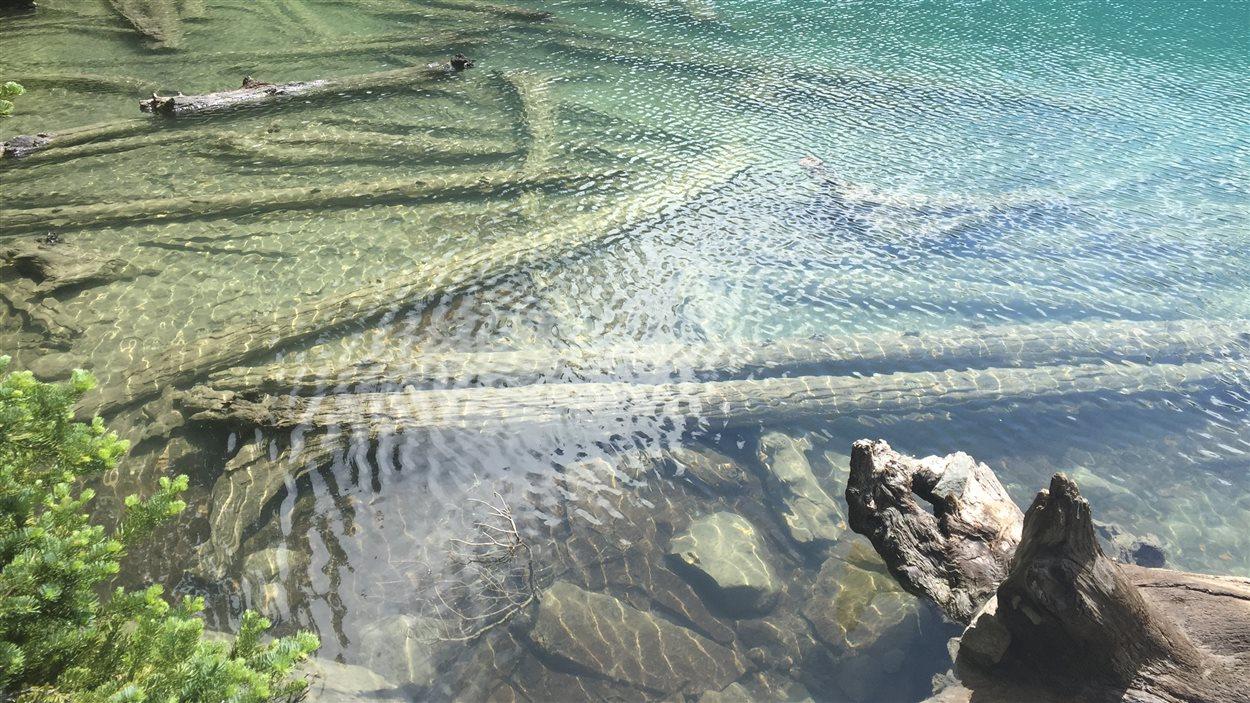 L'eau du glacier qui alimente le deuxième lac Joffre frappe par sa transparence