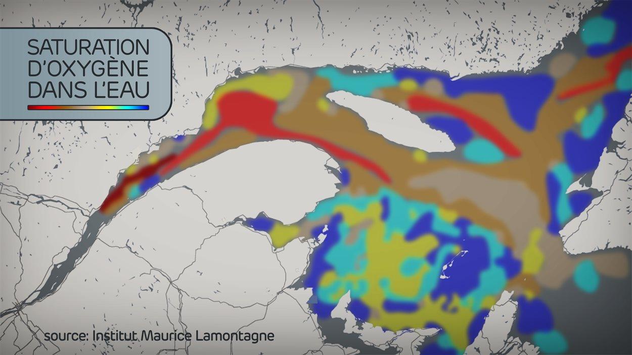 Conditions d'hypoxie dans les eaux profondes du Saint-Laurent (données de 2012)