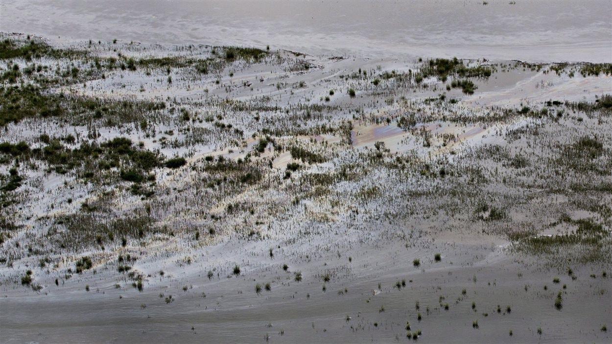 Du pétrole déversé dans la rivière Saskatchewan Nord près de Maidstone, en Saskatchewan.